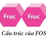 fos-fructo-oligo-saccharide-1