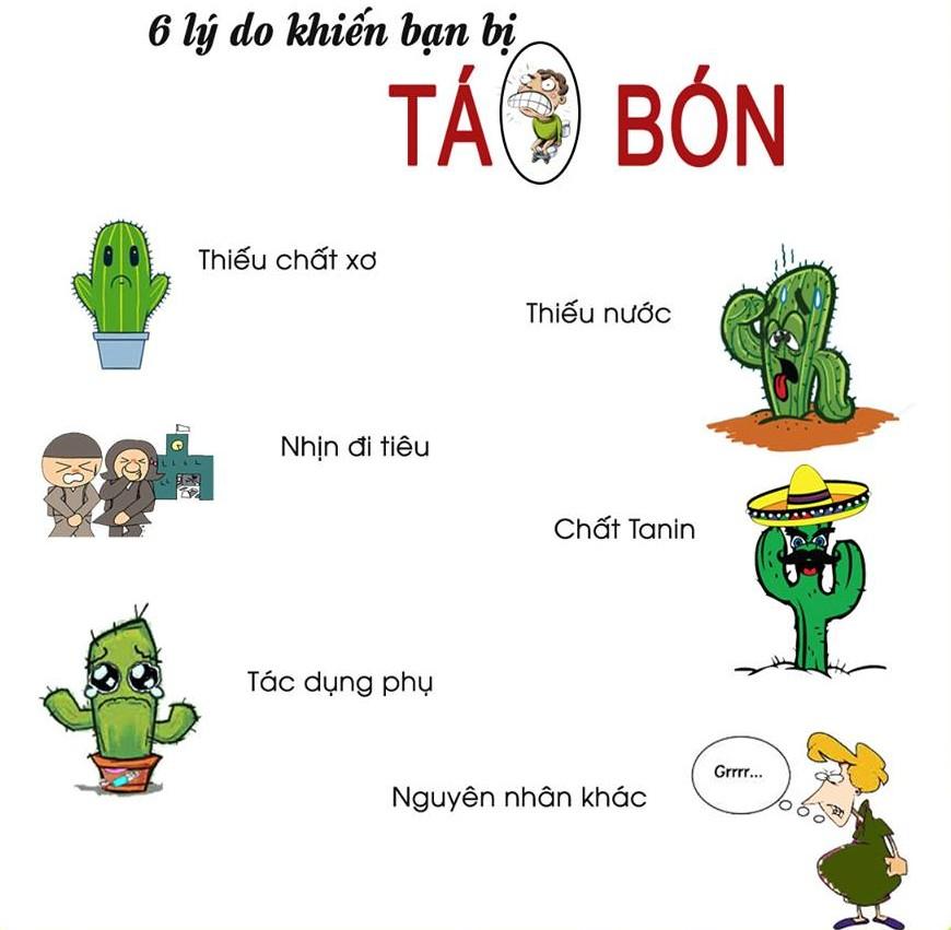 tim-nguyen-nhan-de-tri-tao-bon-an-toan